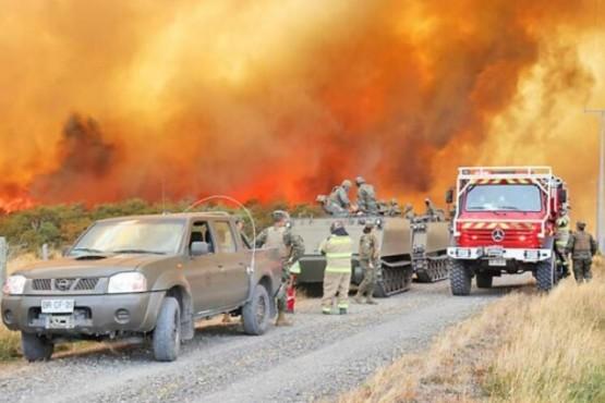 Más de 200 hectáreas de bosque, matorrales y pastizales destruidas en incendio forestal