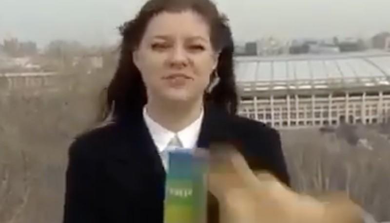 Un perro le robó el micrófono a una periodista en vivo y el video ya es viral