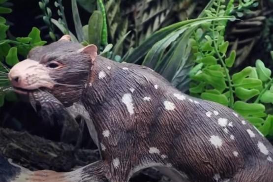 """Descubren una nueva especie de mamífero de la """"Era de los dinosaurios"""" cerca de Torres del Paine."""