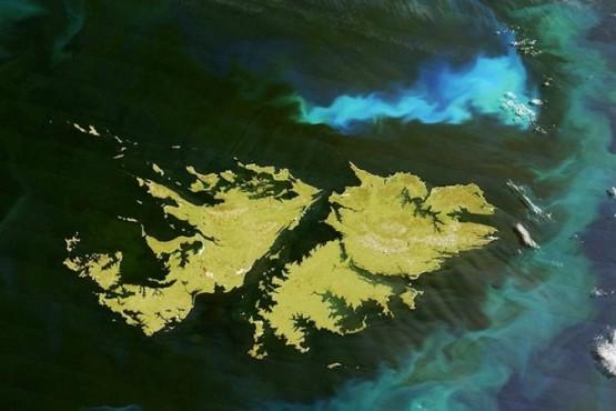 Malvinas: Argentina expresó su