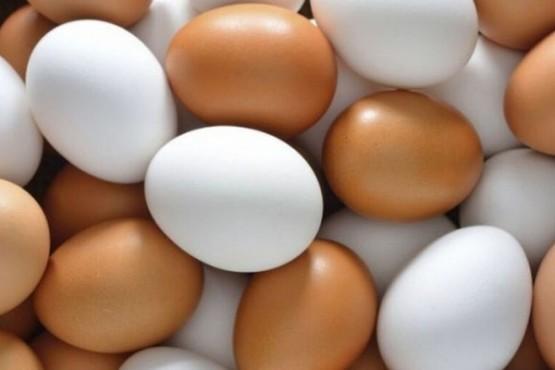 Por qué los huevos flotan al ponerlos en agua y qué significa