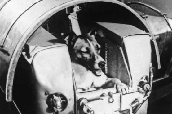 El satélite Sputnik 2 donde murió Laika era del tamaño de una lavadora (BBC).