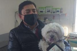 """Mes del Animal: Organizan la """"Expo Mascotas"""" y castración masiva en la Rural"""