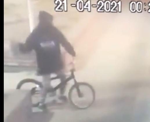 Rompieron el vidrio para robar un local de autocultivo en Río Gallegos