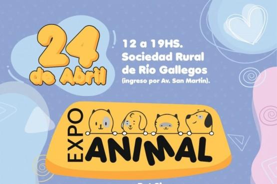 """Mañana se realiza la """"Expo Animal"""" en la Sociedad Rural de Río Gallegos y jornada de castración"""