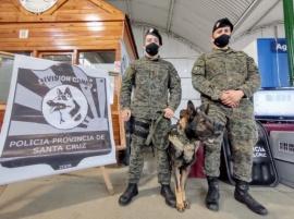 El fuerte vínculo entre los perros y los agentes de la Policía