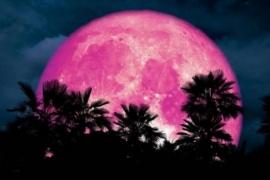 Superluna rosa: el impactante fenómeno que podrá verse estos días