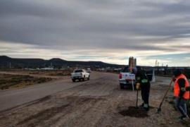 Vialidad Provincial realiza tareas de acondicionamiento en rutas de la provincia