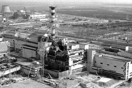 Desde arañas extrañas hasta ranas más oscuras, los animales mutantes de Chernobyl a 35 años del accidente