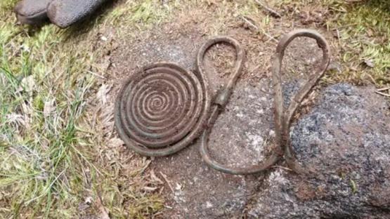 Salió a caminar por un bosque y halló un tesoro de hace 2500 años