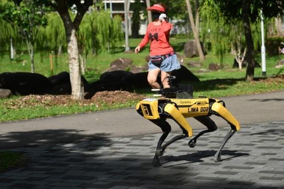 La policía de cancela el polémico uso de perros-robot