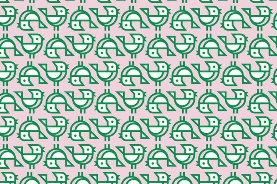 Reto Viral: Encontrar los tres pajaritos sin el pico abierto