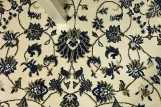 Encuentra el celular oculto en la alfombra en menos de 15 segundos