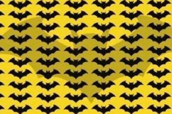 Tienes 10 segundos, 'Batman': halla al murciélago diferente del reto viral