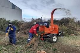 Municipio de Río Gallegos puso en funciones la maquina chipeadora