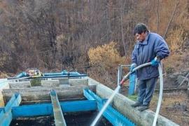 El Gobierno realizó la limpieza y puesta funcionamiento  de un decantador de agua en El Hoyo
