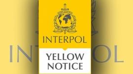 Interpol lanzó una alerta amarilla para reforzar la búsqueda de Guadalupe Lucero