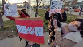 Final feliz en Río Gallegos: los pitbulls judicializados fueron dados en adopción